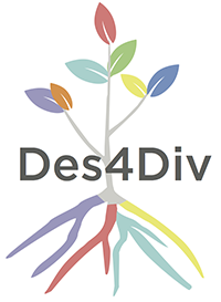 Design for Diversity project icon
